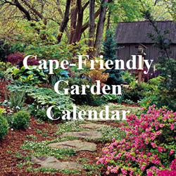 Cape-Friendly Garden Calendar