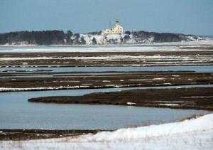 Cape's Disappearing Salt Marsh